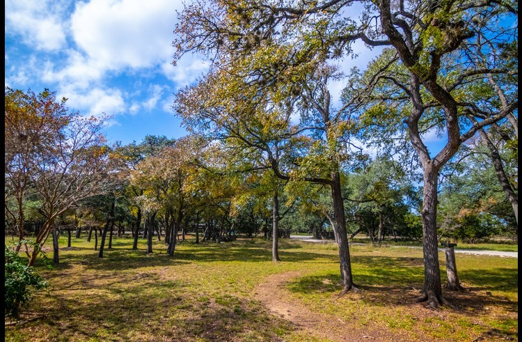 Our property is full of lovely live oaks. Did we mention the 5 private acres?