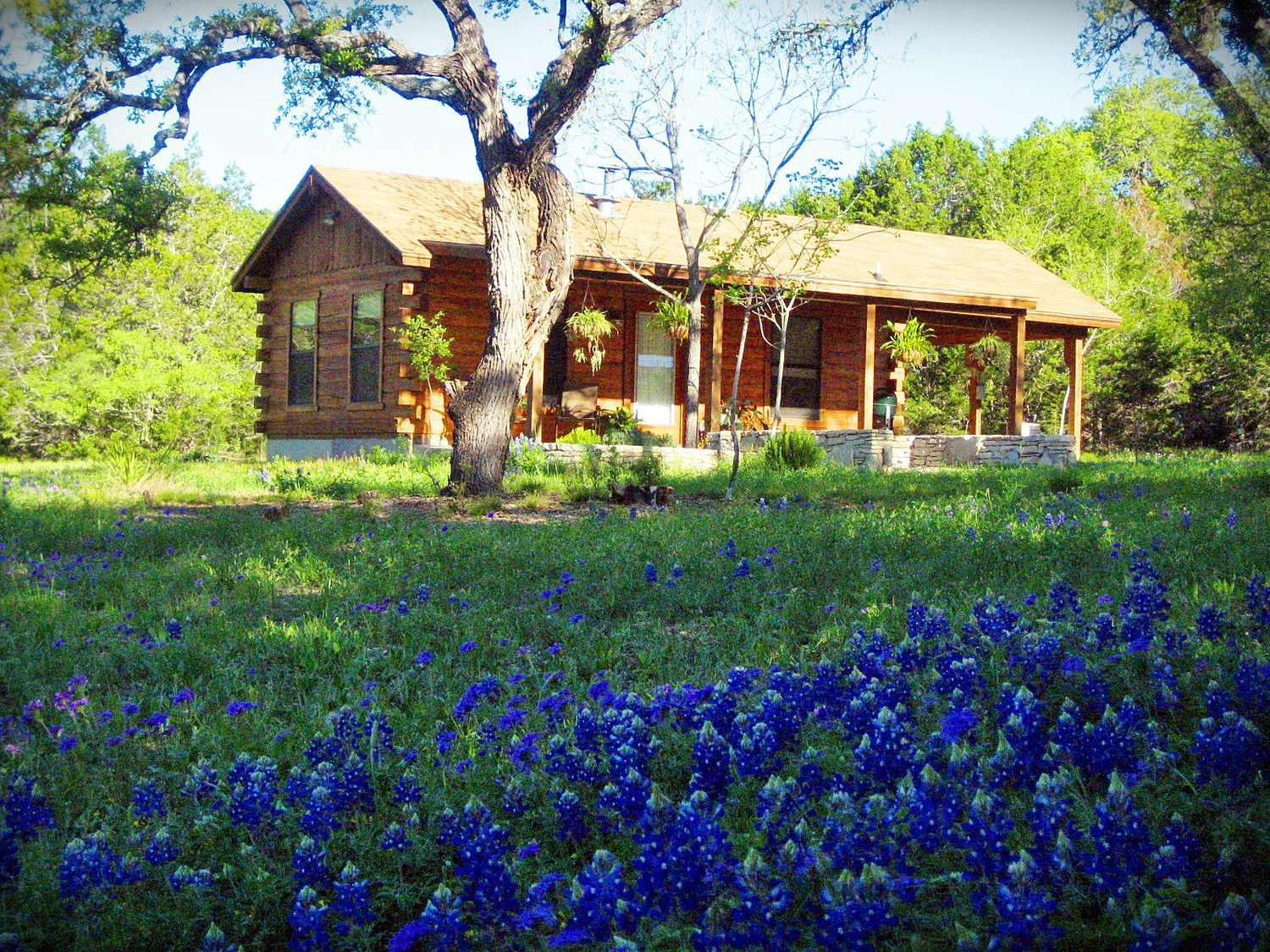 Beautiful Vacation Rentals In Wimberley Texas