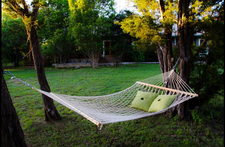 The backyard hammock.